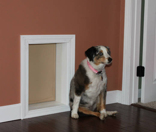 Insulated Pet Doors Compare Dog Door Options Freedom P