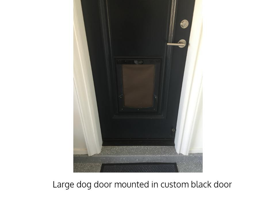 Large Freedom Pet Pass insulated dog door