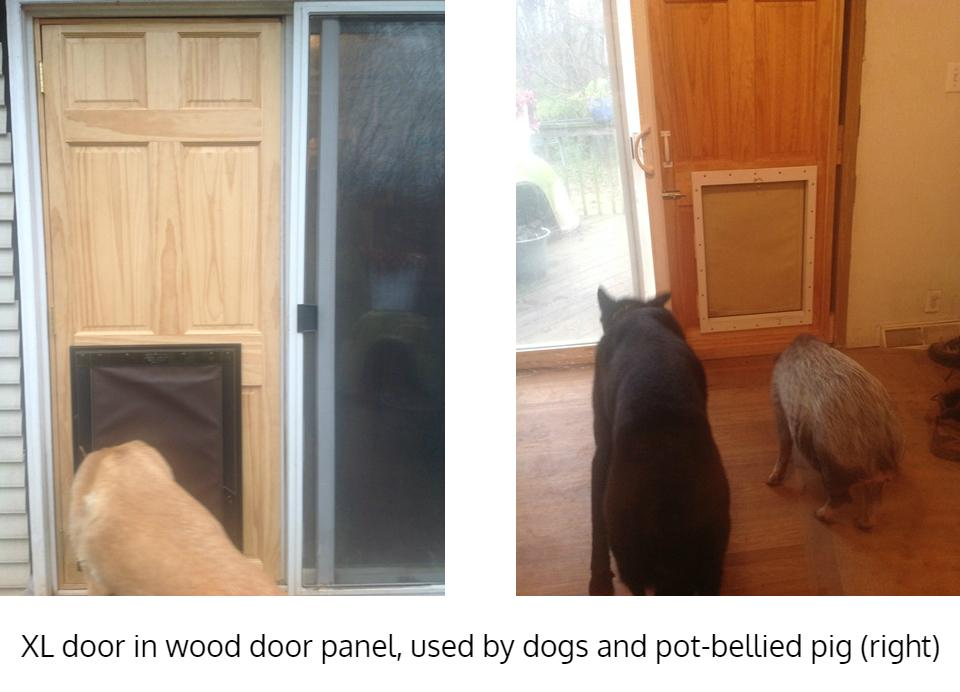Extra large dog door installed in custom panel - Freedom Pet Pass