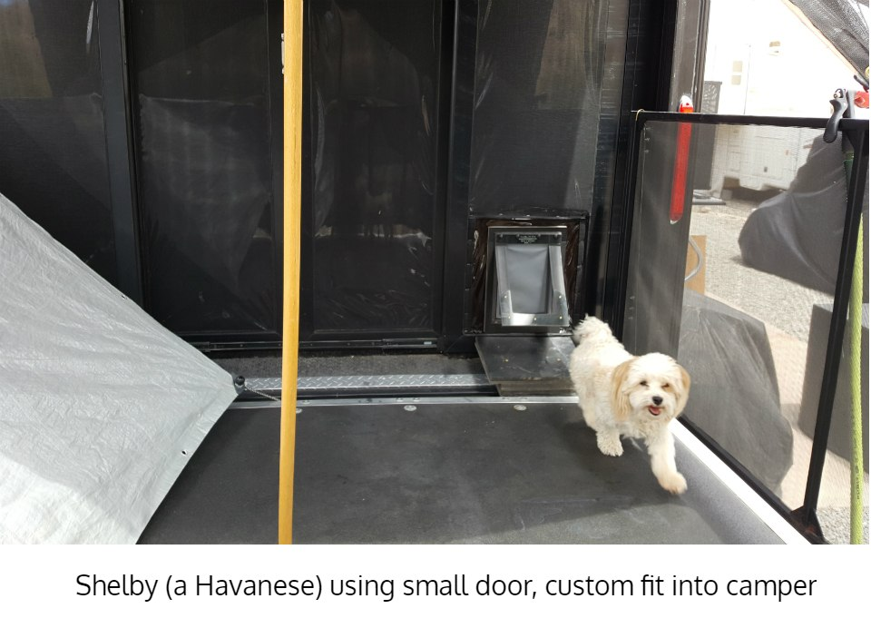 Havanese using small dog door - Freedom Pet Pass energy-efficient insulated pet doors