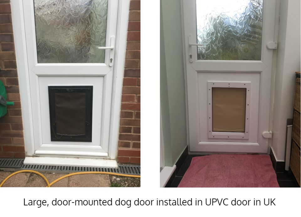 Large Freedom Pet Pass dog door installed in uPVC door in UK