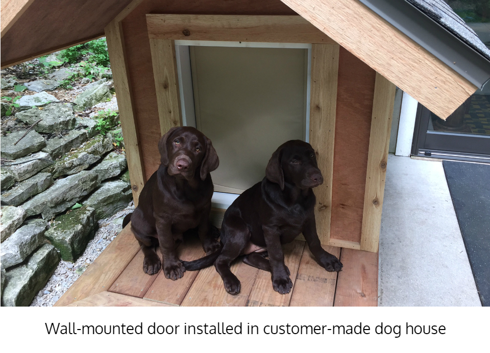 Freedom Pet Pass dog door installed in dog house