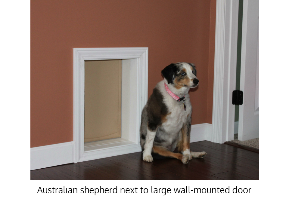 Insulated Pet Doors For Walls Dog Freedom P