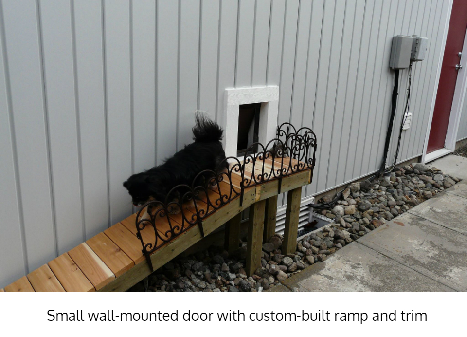 Freedom Pet Pass wall-mounted pet door with custom ramp
