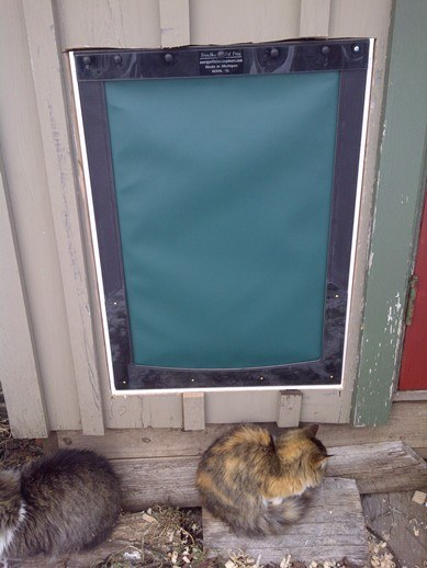 Insulated Pet Doors Cat Dog Door Reviews Best